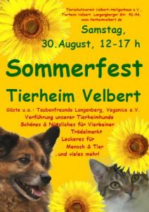 TierheimfestSo2014